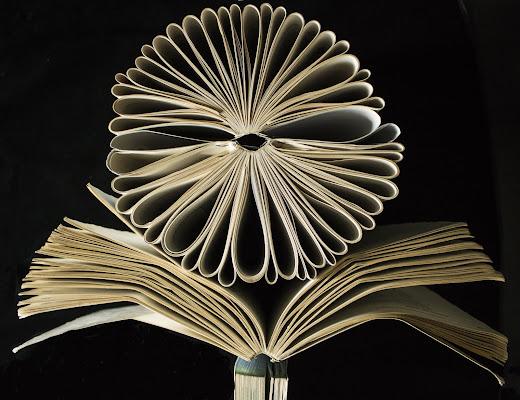 il libro in fiore di PaolaPlinia