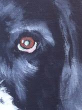 Photo: Izzy's eye