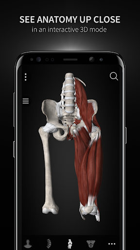 Anatomyka - Interactive 3D Human Anatomy 1.1.1 screenshots 4