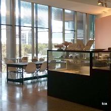 Photo: Matte Black Fridge Wrap | The Crossbar Café, Level 3, The Ian Potter Centre: NGV Australia #matteblack #fridgewrap #NGV #counterwrap — at NGV Australia: The Ian Potter Centre