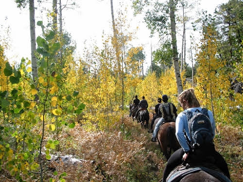 Best Adventurous Things to Do In California // Horseback riding in Sierra Nevada mountains