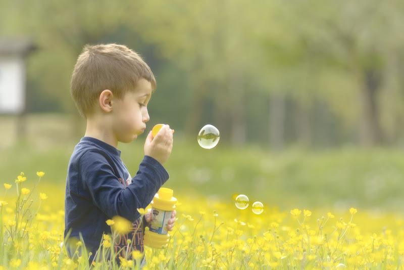 La bolla di sapone di nidinola