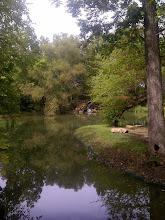 Photo: Pond, New Harmony IN