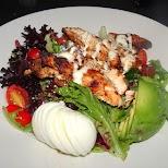 delicious salad at Williams Landing in Toronto, Ontario, Canada