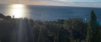 terrain à batir à Santa-Maria-di-Lota (2B)