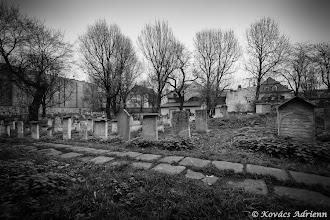 Photo: A zsinagóga melletti temető