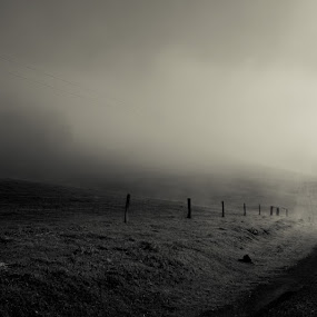 At the End of Savage Creek Road by Greg Rowe - Landscapes Mountains & Hills ( white, road, morning, black, mist )