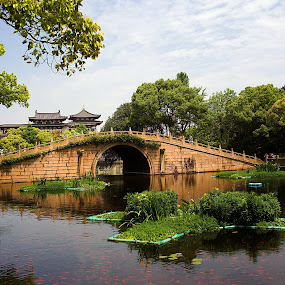 Taken with Flektogon 35mm F2.8 by Xiufen Gu - Buildings & Architecture Bridges & Suspended Structures ( mt puoto, f2.8, mt putuo, carl-zeiss, depth of field, bridge, flektogon, china, canon eos 5d mark ii )
