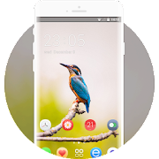 Theme for kingfisher bird branch blur wallpaper icon