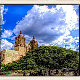 cathedral, oaxaca, mexico  by Jim Knoch - Buildings & Architecture Places of Worship