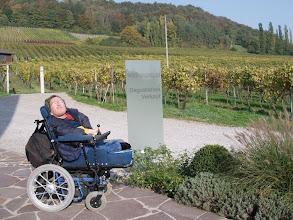 Photo: Weingut Engelhof in Hohentengen