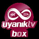 Uyanık TV Box 2.4
