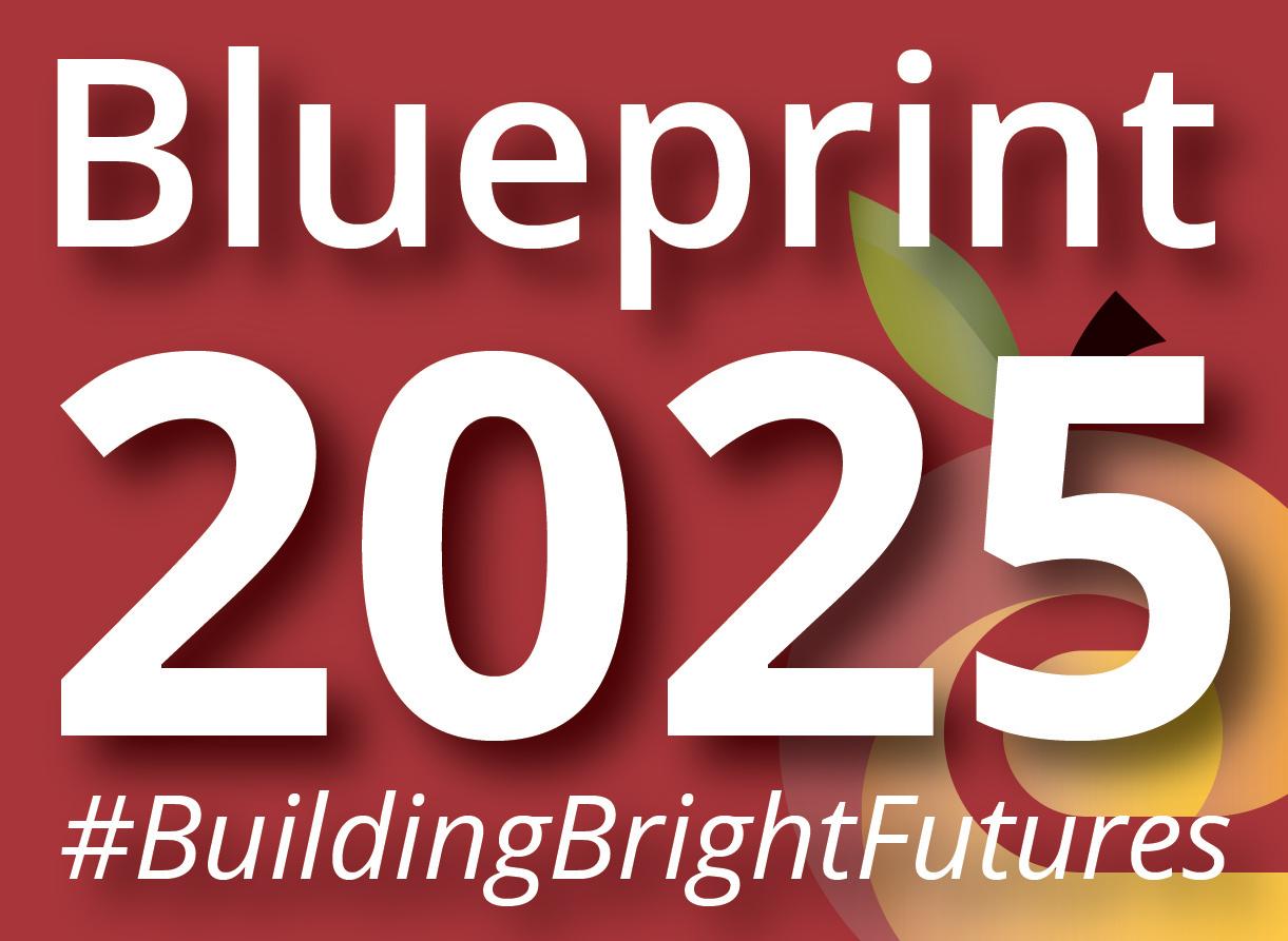 Blueprint 2025