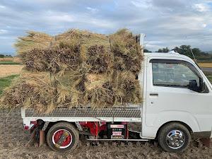 ハイゼットトラック s500のカスタム事例画像 おデブさんの2020年10月06日22:01の投稿