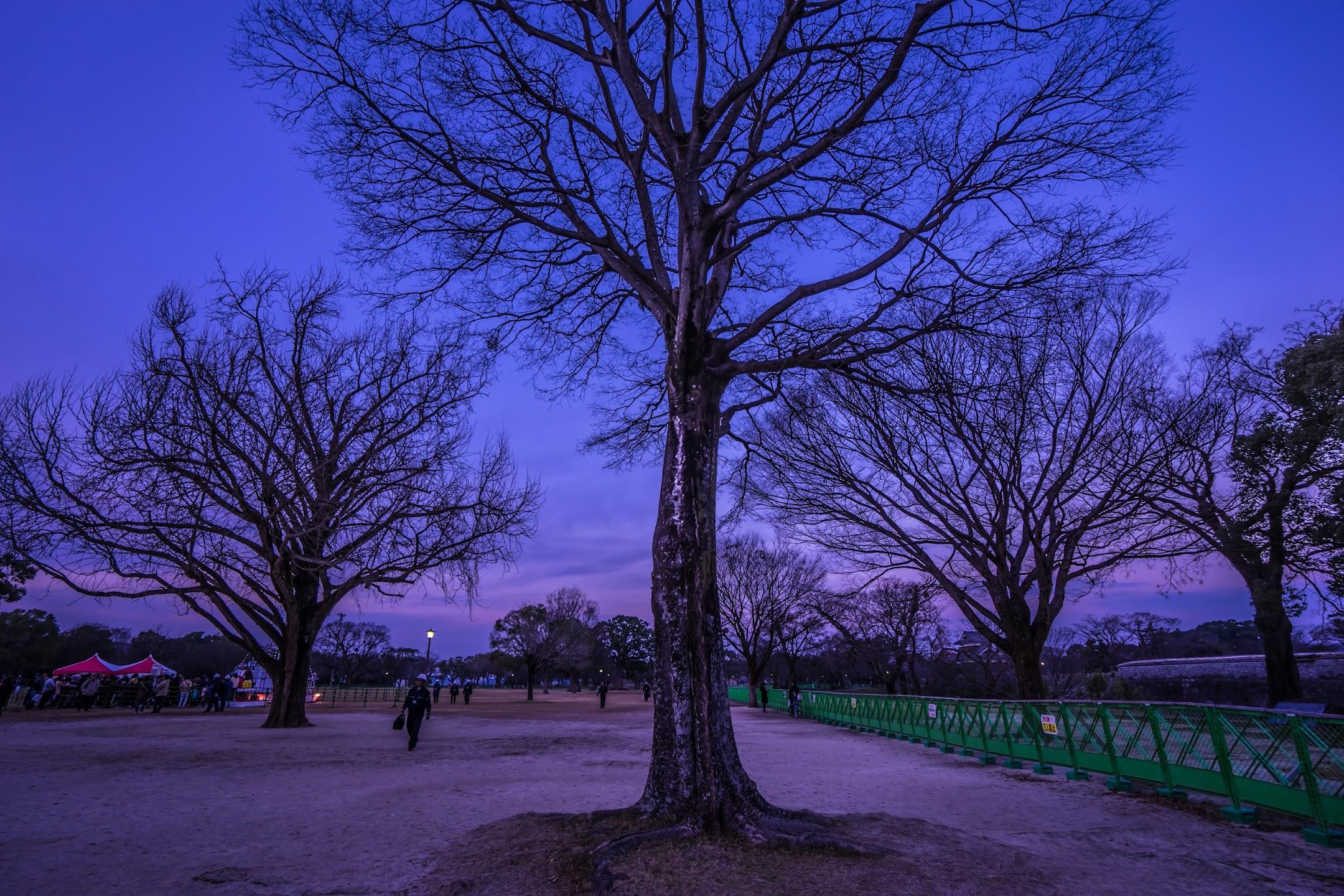 Kumamoto Castle Ninomaru Park2