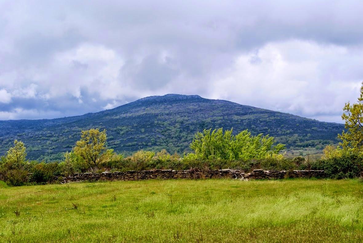 Photo: Vista del Ocejón desde el Camino Real