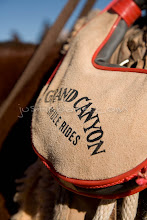 Photo: Bota bag on mule on trail along the Grand Canyon. Grand Canyon NP, AZ.