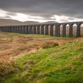 Ribblehead by Darrell Evans - Buildings & Architecture Bridges & Suspended Structures ( north yorkshire, sky, viaduct, yorkshire, countryside, old, settle-carlisle railway, clouds, transport, building, stone, outdoor, yorkshire dales, uk, grass, ribblehead, hills, moors, railway, blea moor, travel, landscape, batty moss )
