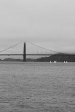 Photo: Small white sails weave around under the Golden Gate Bridge.
