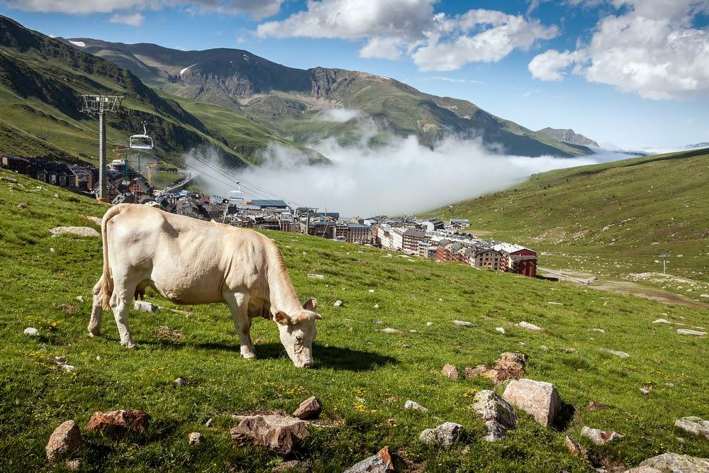 que ver y hacer en Andorra