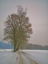 Photo: Weg