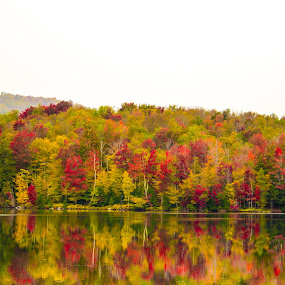Vermont Fall by Harish Kumar K - Landscapes Waterscapes ( vermont fall )