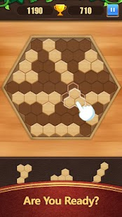 Block Puzzle Game Classic Screenshot