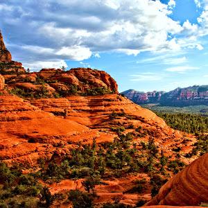 Arizona 589_Detail.jpg