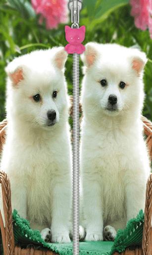かわいい子犬ジップ画面ロック