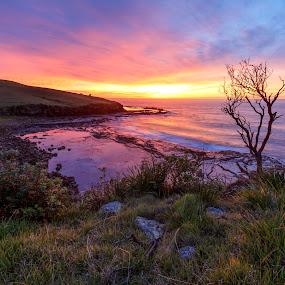 Australian Sunrise by Andy Hutchinson - Landscapes Sunsets & Sunrises ( clouds, kiama, austrlia, gerringong, nsw, sunrise, rocks, coast )
