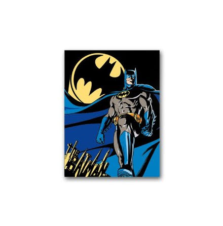 Batman - Posing - Fleece Filt