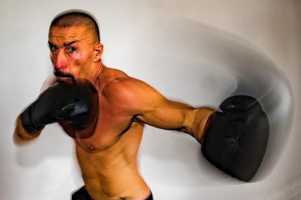 Boxer di Andrea Izzotti