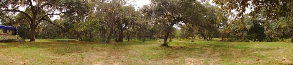 Photo: Green Oaks Estates - 63.4 acres