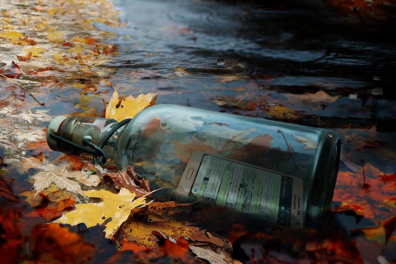 Message in a bottle 2.0 di Daniela Ghezzi