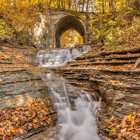 Glenn Mill Falls by Michael Wolfe - Landscapes Waterscapes ( fall colors, falls, waterfall, rock, bridge, leaves,  )