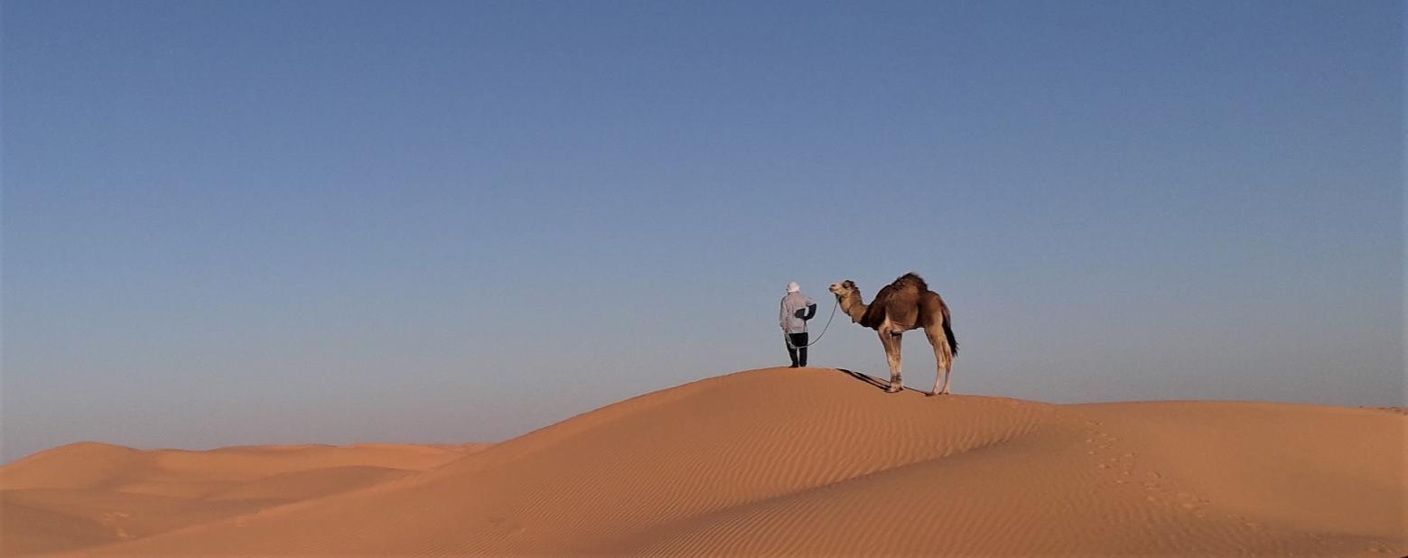F:\20200228_173052 (3)Ali et dromadaire dune.jpg