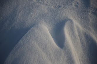 Photo: snow formed by the wind