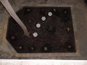 Photo: Εσωτερικός κήπος-Inside garden