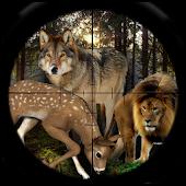 Wild Hunter 2016