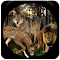 Wild Hunter 2016 1.0 Apk