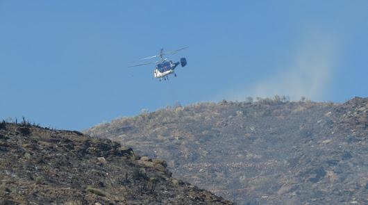 Más de 445 hectáreas han sido arrasadas por los incendios durante este año