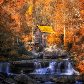 0384-LF-0610-01-15 by Fred Herring - Landscapes Forests (  )
