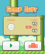 Photo: Kaleya scores a 45 in Flappy Bird!