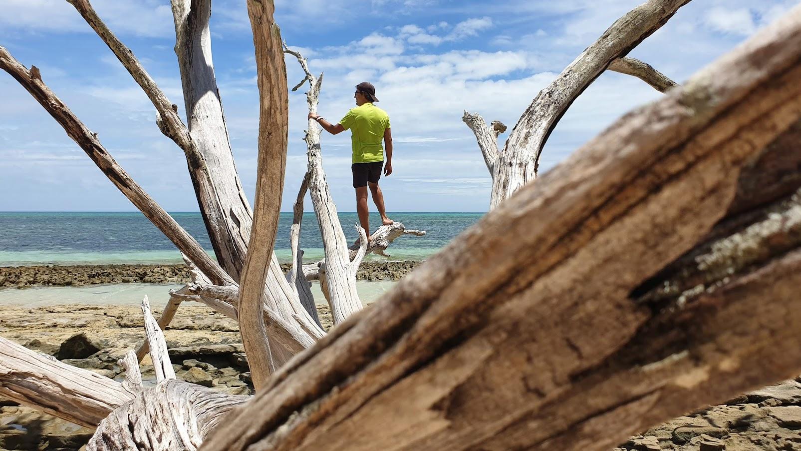 VISTO DA AUSTRÁLIA - Tudo o que precisa de saber para viajar na Austrália