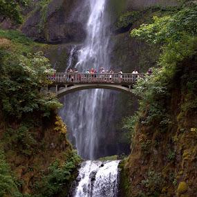 Multnomah Falls, OR by Roxana McRoberts - Travel Locations Landmarks (  )