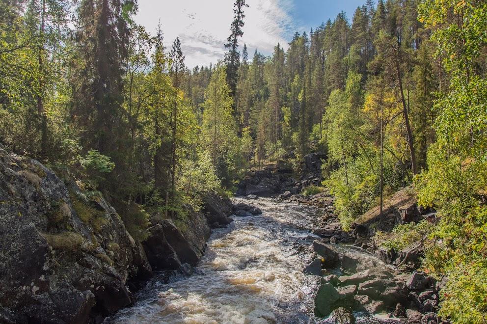 natuur-finland