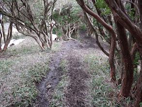 登山道は泥々・・・