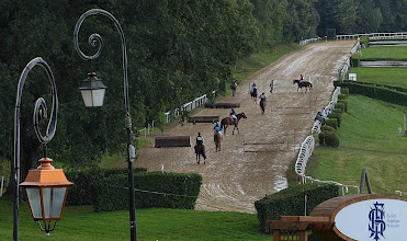 Photo: Pompadour also houses the French National Stud Farm, and horse trials were being held on the rainy day we visited.