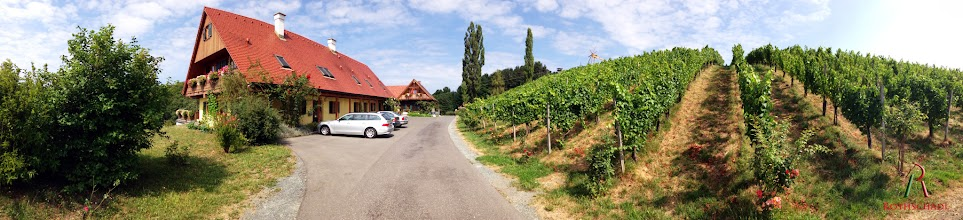 Photo: #Panorama #Weingut #Rothschädl