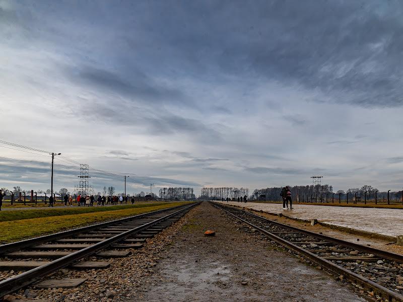 ...Auschwitz di zac1